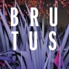 Brutus (BE) Le Romandie Rock Club Lausanne Billets