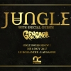 Jungle (UK) + Gengahr (UK) Le Romandie Rock Club Lausanne Billets