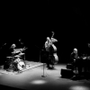The Necks (live) Südpol Luzern Tickets