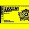 Divercity Daydance Outdoor Werkk Kulturlokal Baden Billets