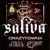 Saliva + Crazy Town Z7 Pratteln Tickets
