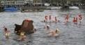 15. Z�rcher Samichlaus-Schwimmen