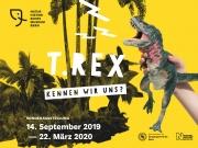 T-Rex - Kennen wir uns?