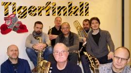 Tigerfinkli Kinder.musical.theater Storchen St.Gallen Billets