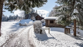 Kulinarik Trail Wald und Winter Flims Waldhaus Flims Biglietti