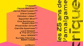 1994 électrique : les 25 ans de L'Amalgame Amalgame Yverdon-les-Bains Billets