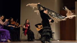 Flamenco Festival Volkshaus Basel Biglietti