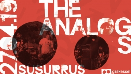 The Analogs (PL) Gaskessel Bern Tickets