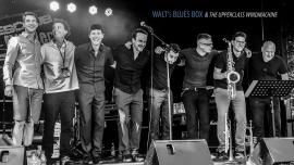 Walt's Blues Box mit Walter Baumgartner & Richard Köchli Kulturhof-Schloss Köniz - Rossstall Köniz Billets