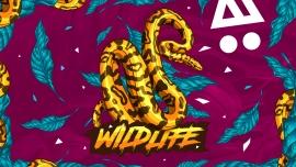 Wildlife MÄX Zürich Tickets