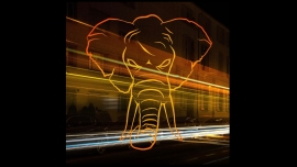 Zleeping elephants Sommercasino Basel Tickets