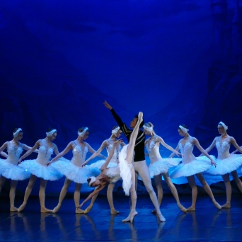 Swanlake Diverse Locations Diverse Orte Tickets