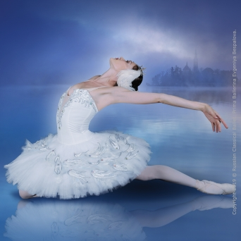 Swanlake - Russian Classical Ballet Volkshaus Zürich Tickets