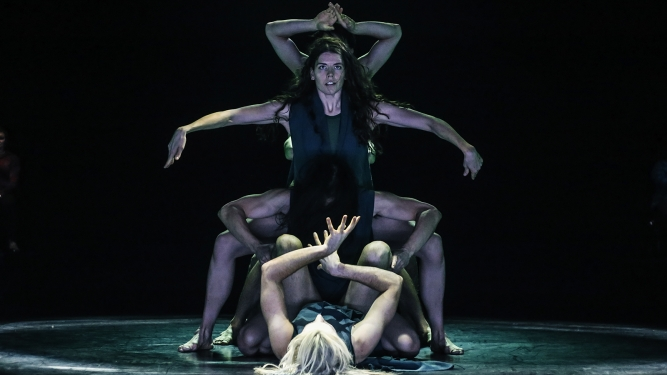 Steps: Australian Dance Theatre Equilibre Fribourg Tickets