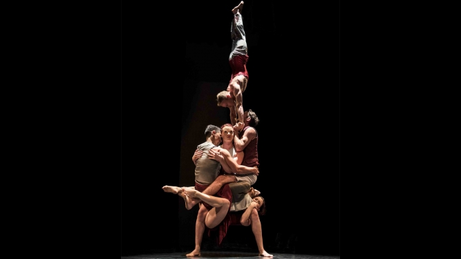 Casus Circus (AUS) Theater Casino Zug, Theatersaal Zug Tickets