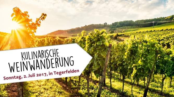 Kulinarische Weinwanderung Rebberge rund um Tegerfelden Tegerfelden Biglietti