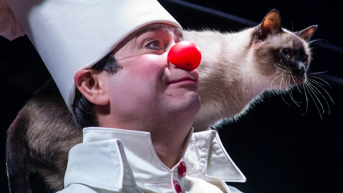 Clown and Cats Theater Spirgarten Zürich Billets