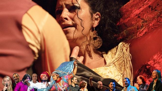12. Oriental & Flamenco-Gypsy Festival Volkshaus Zürich Biglietti