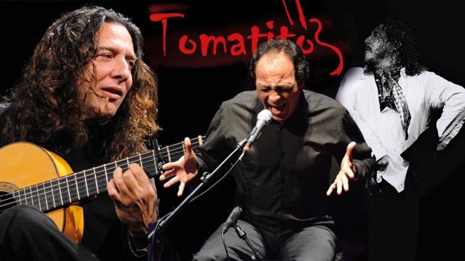 Flamenco Gala Musical Theater Basel Tickets