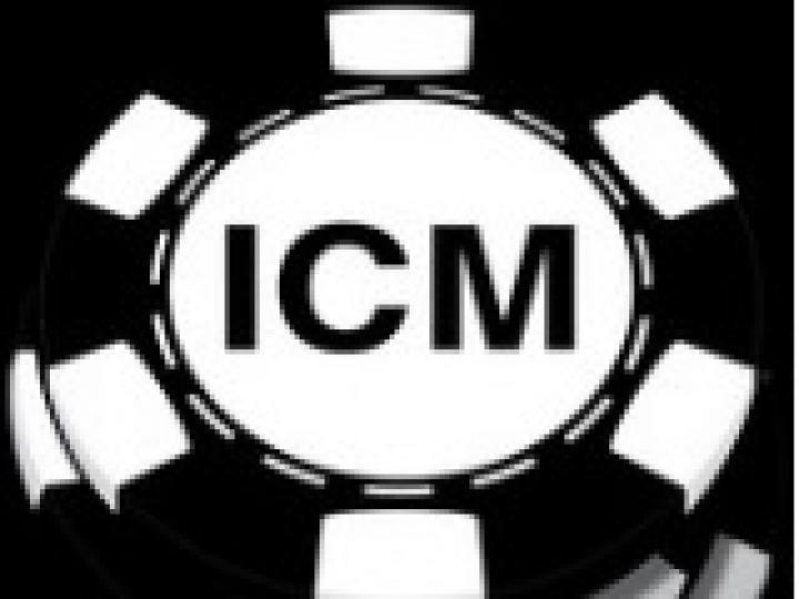 Independent Chip Model