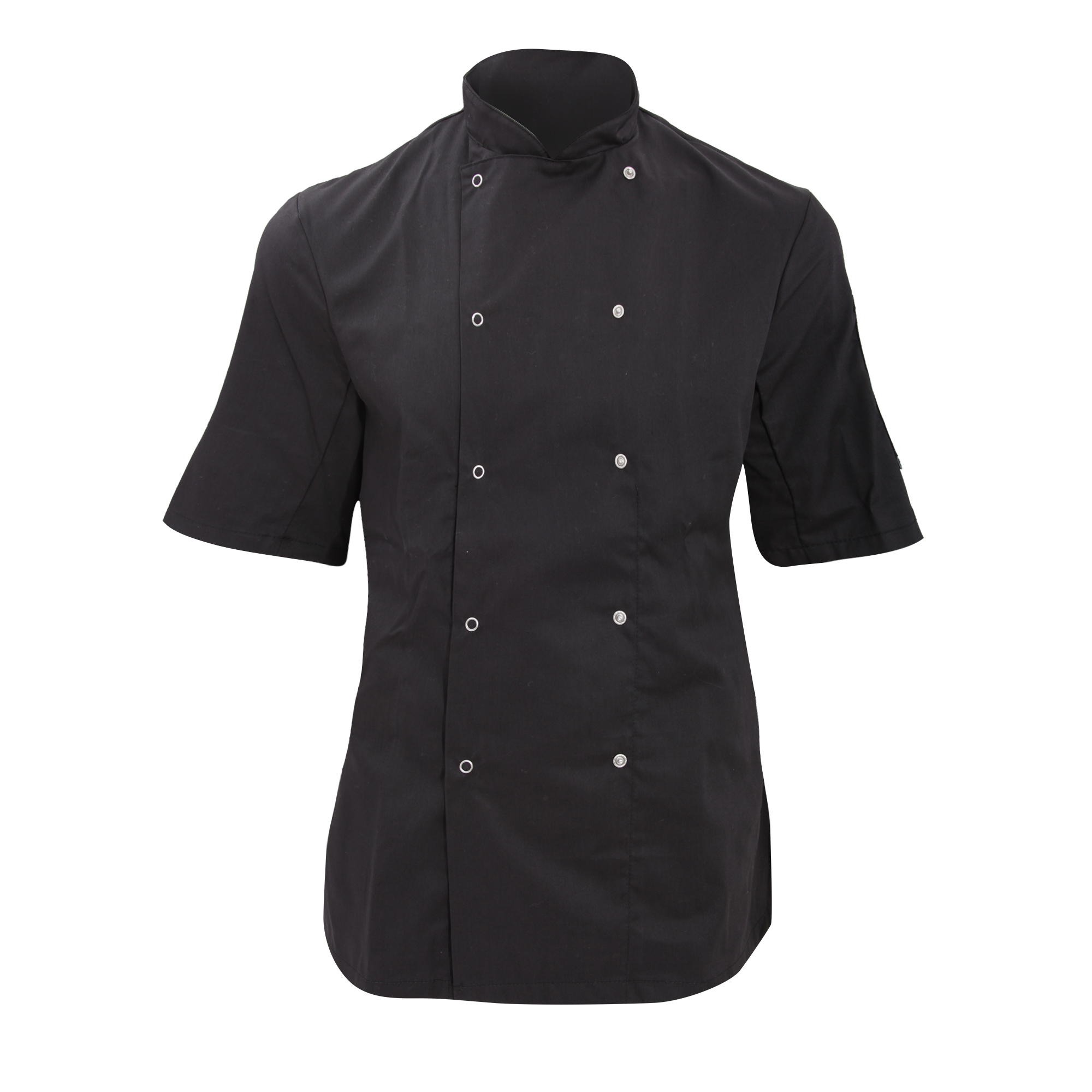 Dennys Womens/Ladies Economy Short Sleeve Chefs Jacket / Chefswear (XS) (Black)