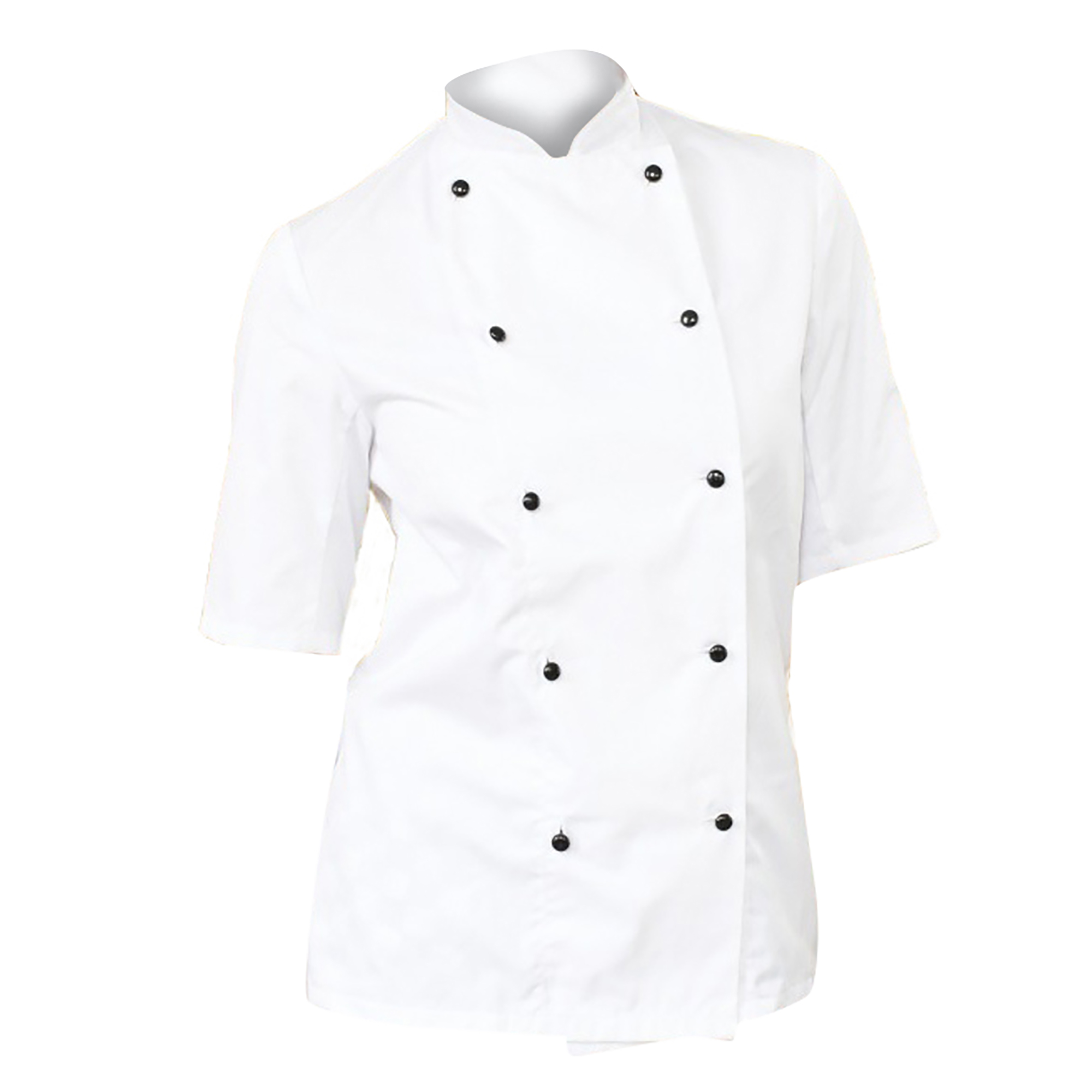 Dennys Womens/Ladies Lightweight Short Sleeve Chefs Jacket / Chefswear (3XL) (White)