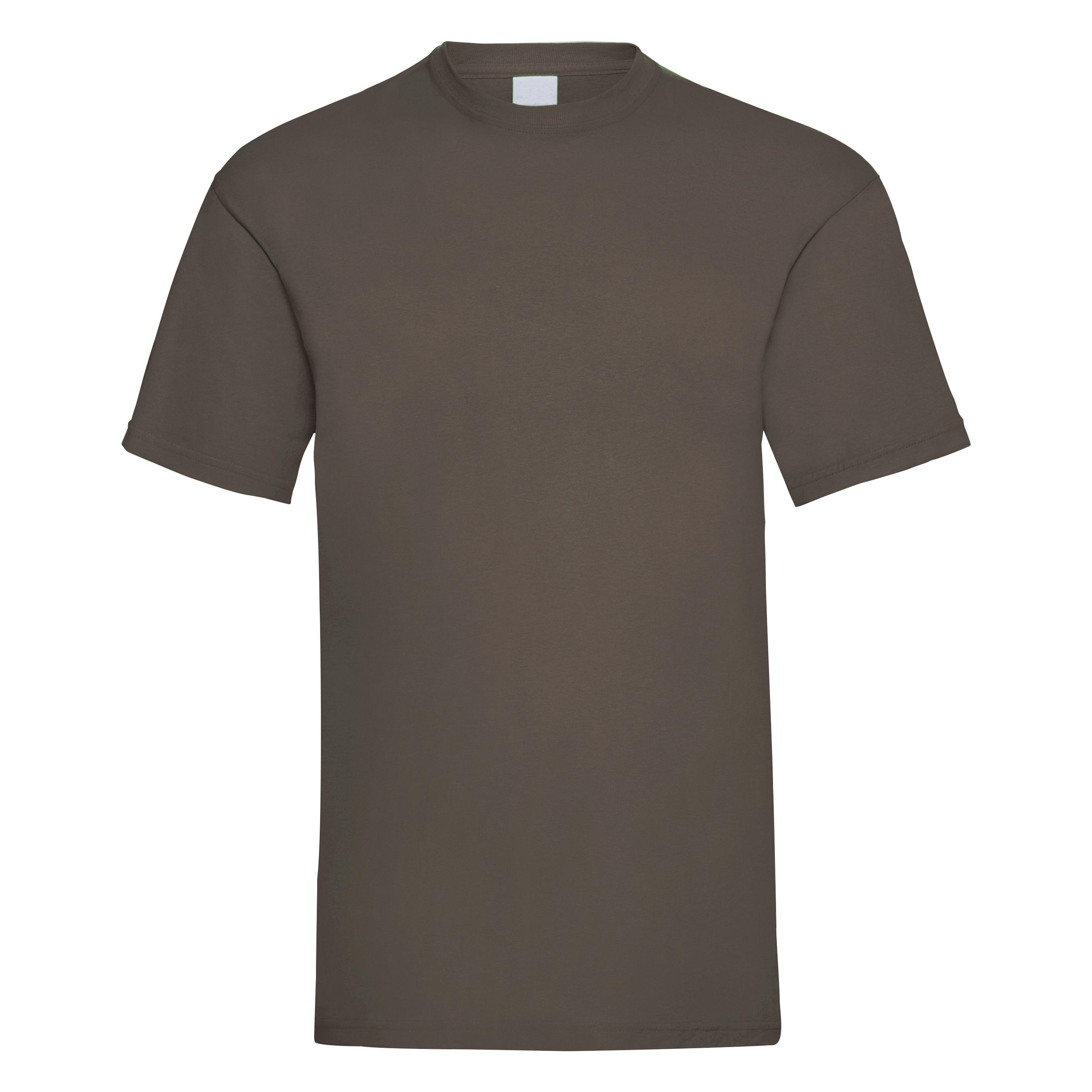 Mens Value Short Sleeve Casual T-Shirt (Medium) (Ash)