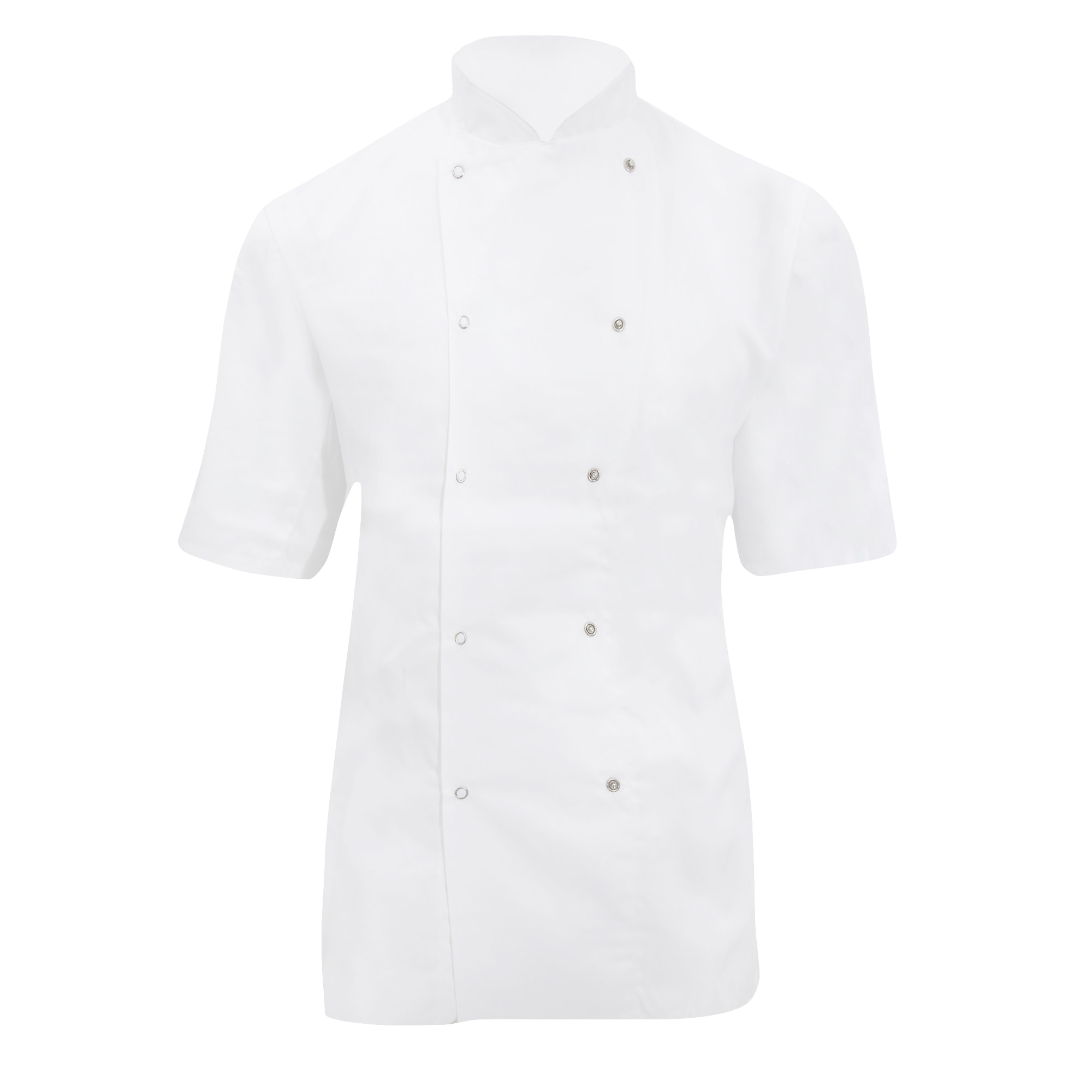 Dennys Ladies/Womens Short Sleeve Chefs Jacket / Chefswear (Pack of 2) (L) (White)