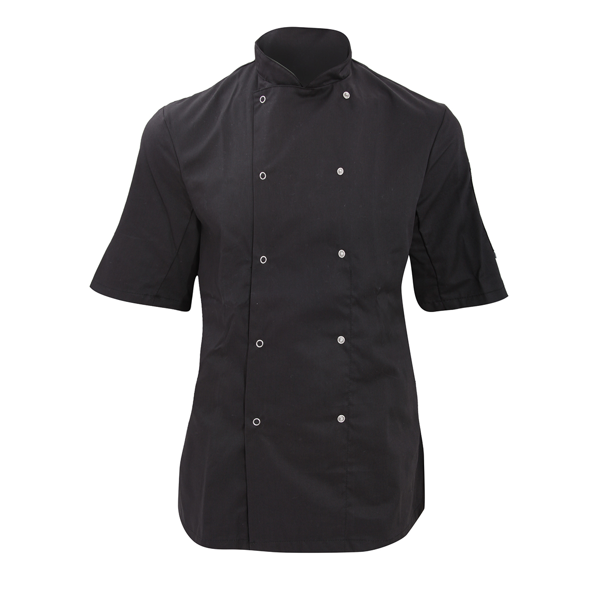 Dennys Womens/Ladies Economy Short Sleeve Chefs Jacket / Chefswear (Pack of 2) (L) (Black)