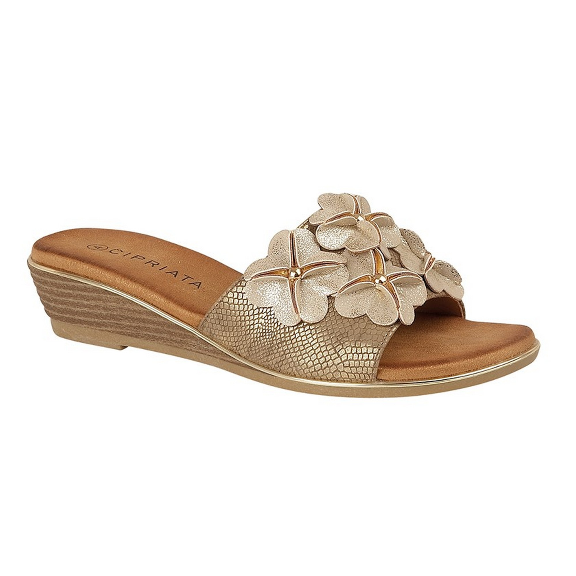 Cipriata Womens//Ladies Bina Crossover Wedge Sandal DF1711