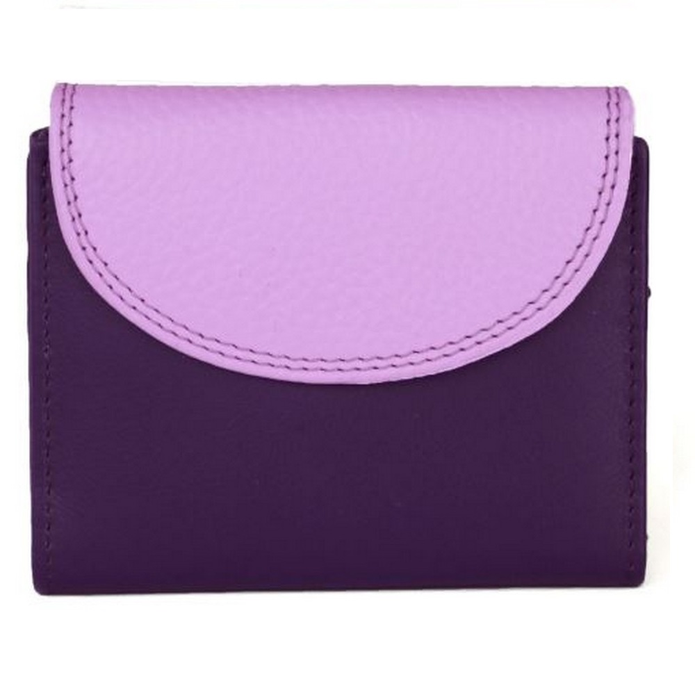 Eastern Counties Leather Womens/Ladies Leanne Purse With Contrast Panel (One Size) (Plum/Violet)