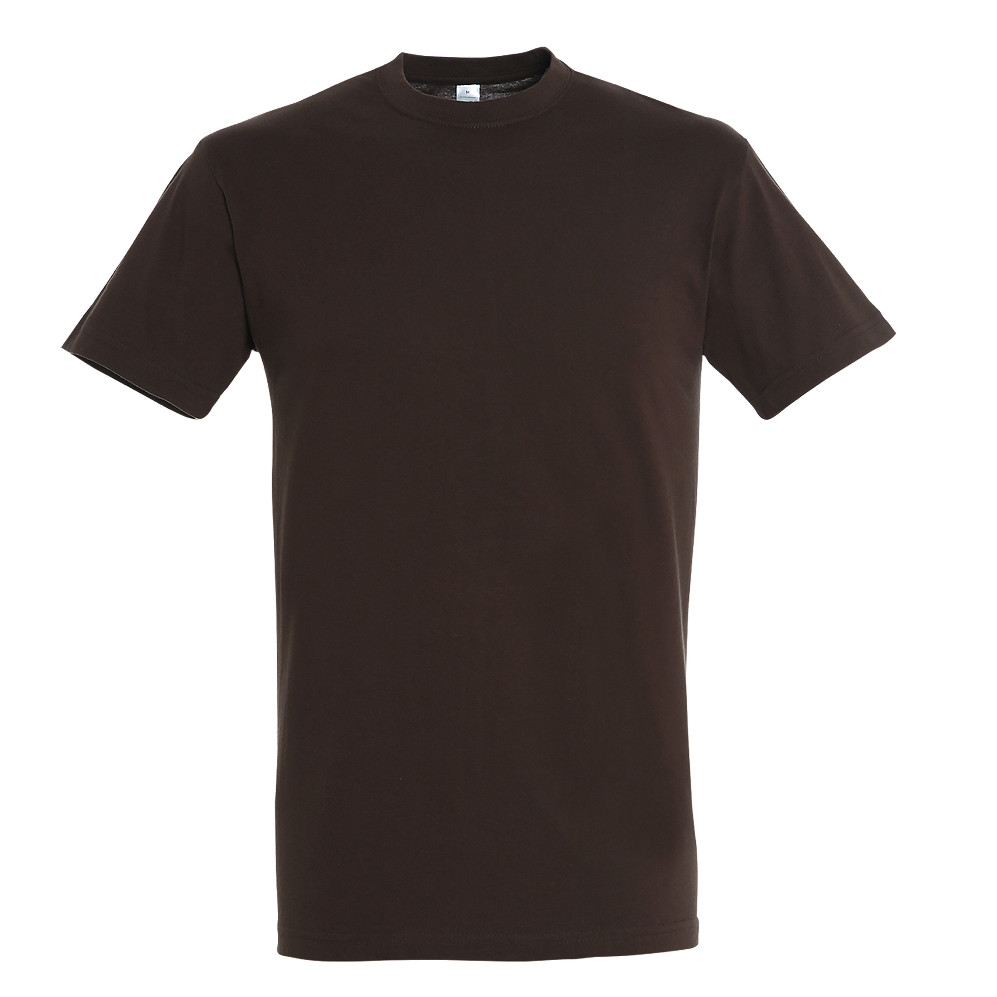 SOLS Mens Regent Short Sleeve T-Shirt (M) (Chocolate)