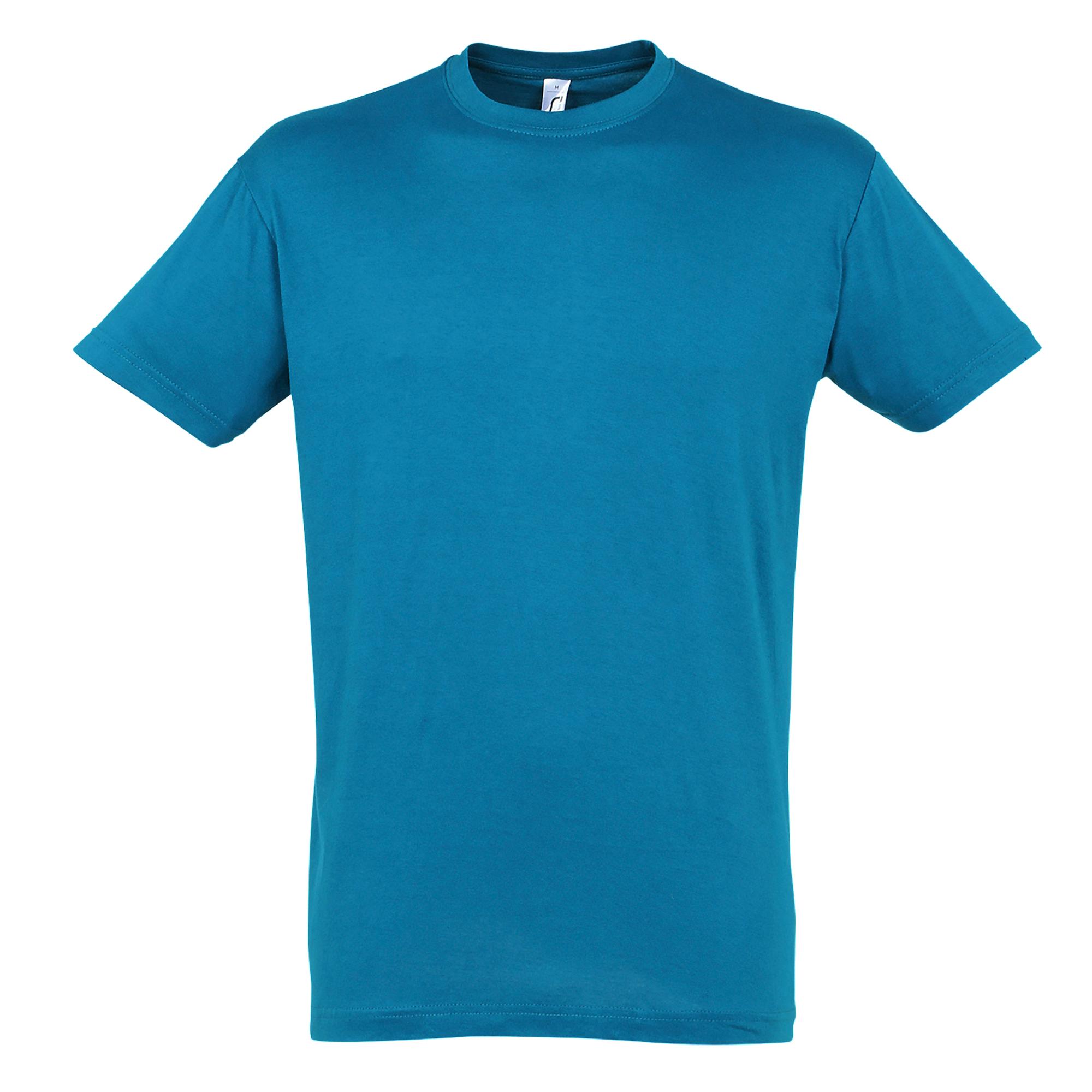 SOLS Mens Regent Short Sleeve T-Shirt (M) (Blue Atoll)