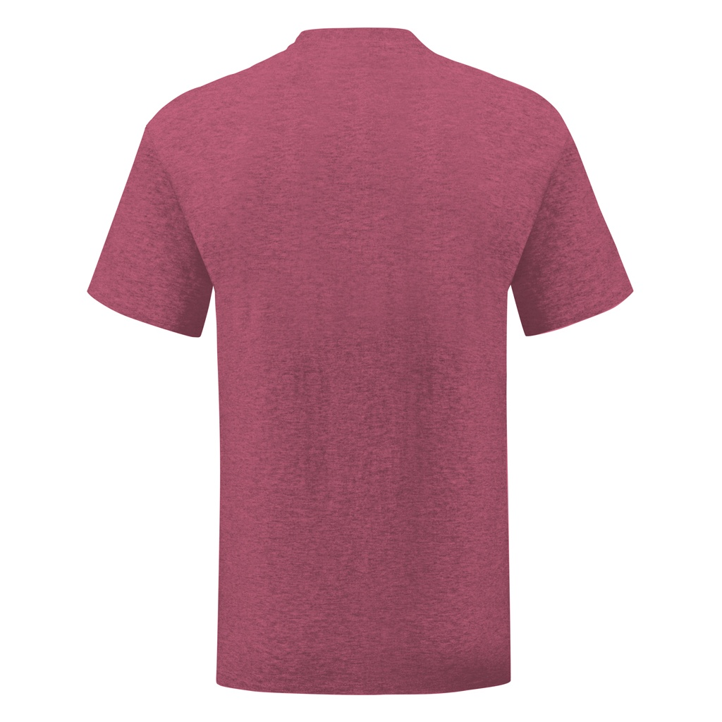 Fruit Of The Loom Mens Iconic T-Shirt (L) (Heather Royal)