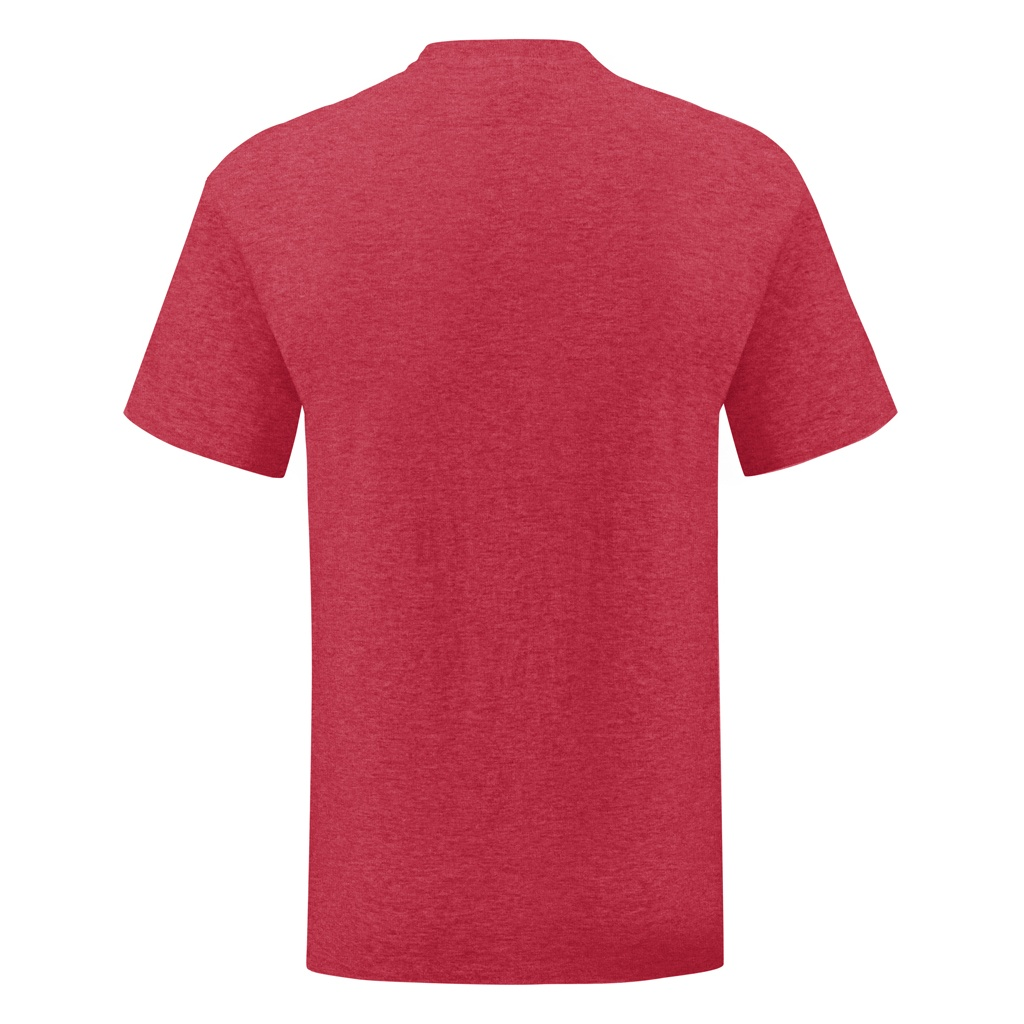 Fruit Of The Loom Mens Iconic T-Shirt (XL) (Heather Green)