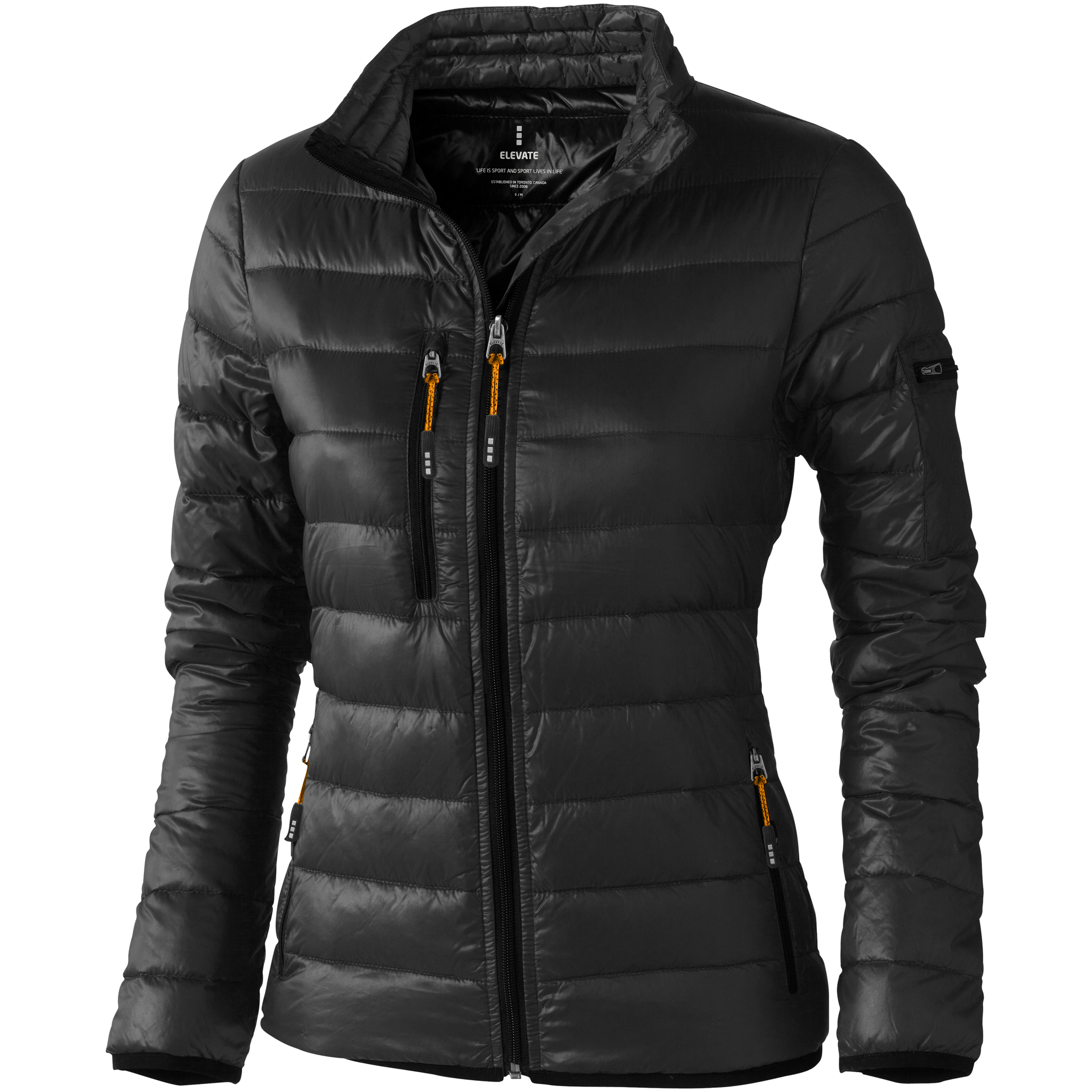 Elevate Womens/Ladies Scotia Light Down Jacket (S) (Anthracite)