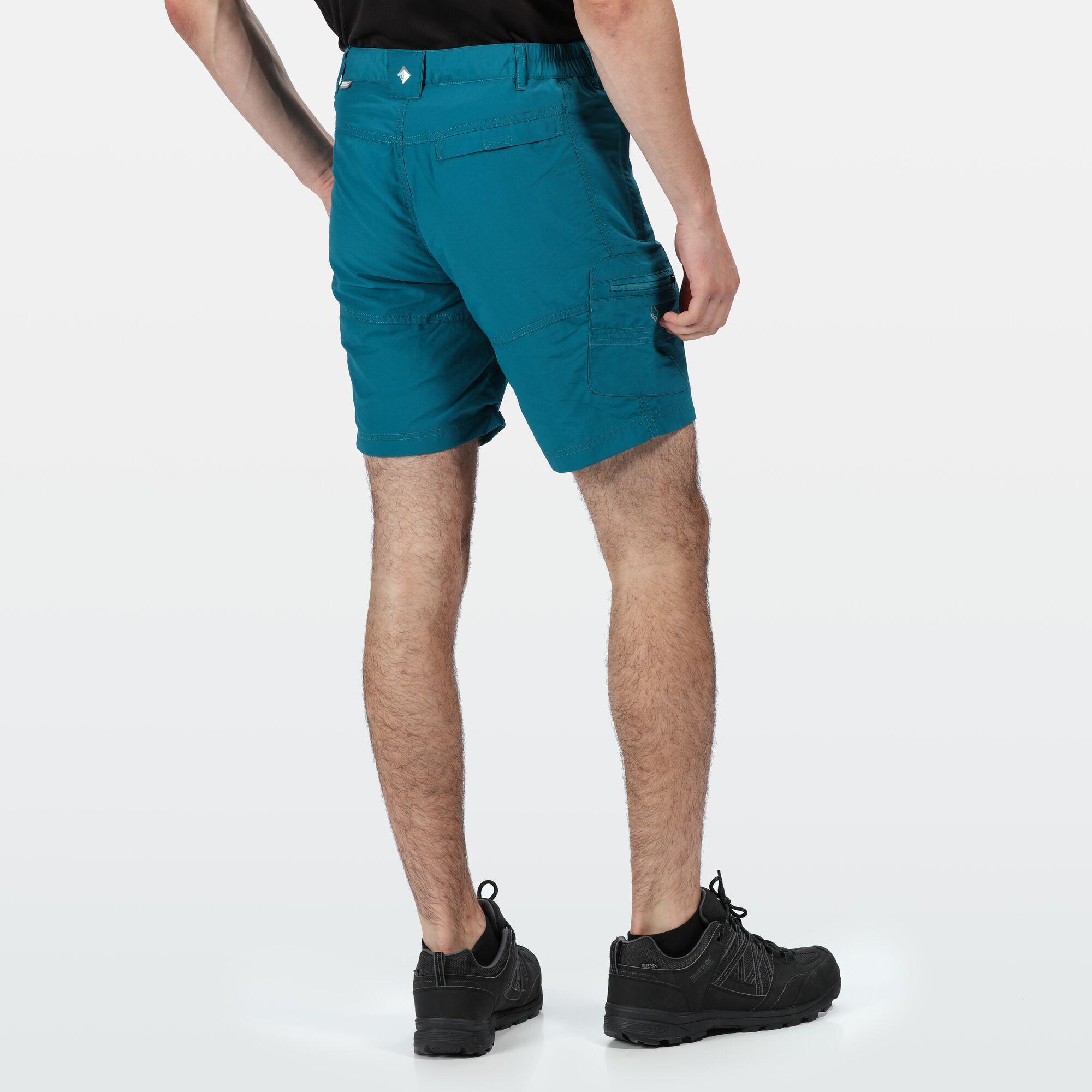 Regatta Mens Leesville II Walking Shorts (32in) (Ash)