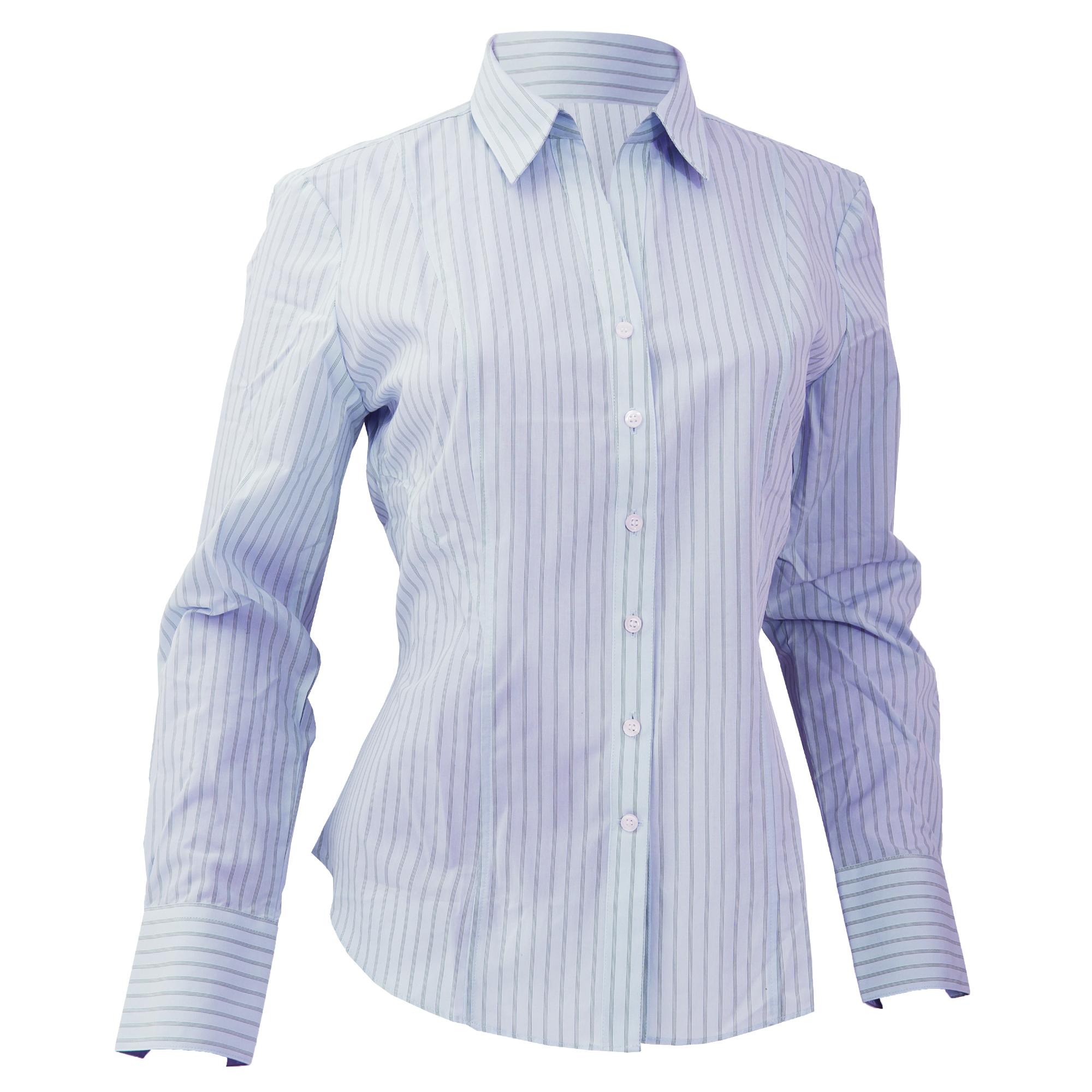 Brook Taverner Ladies/Womens Perano Long Sleeve Blouse (UK 12) (Blue / White Stripe)