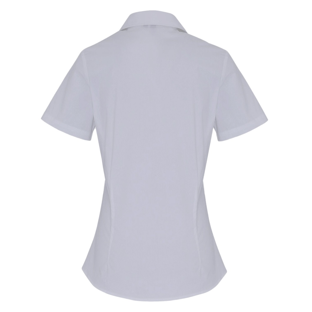 Premier Womens/Ladies Stretch Fit Poplin Short Sleeve Blouse (3XL) (Pale Blue)