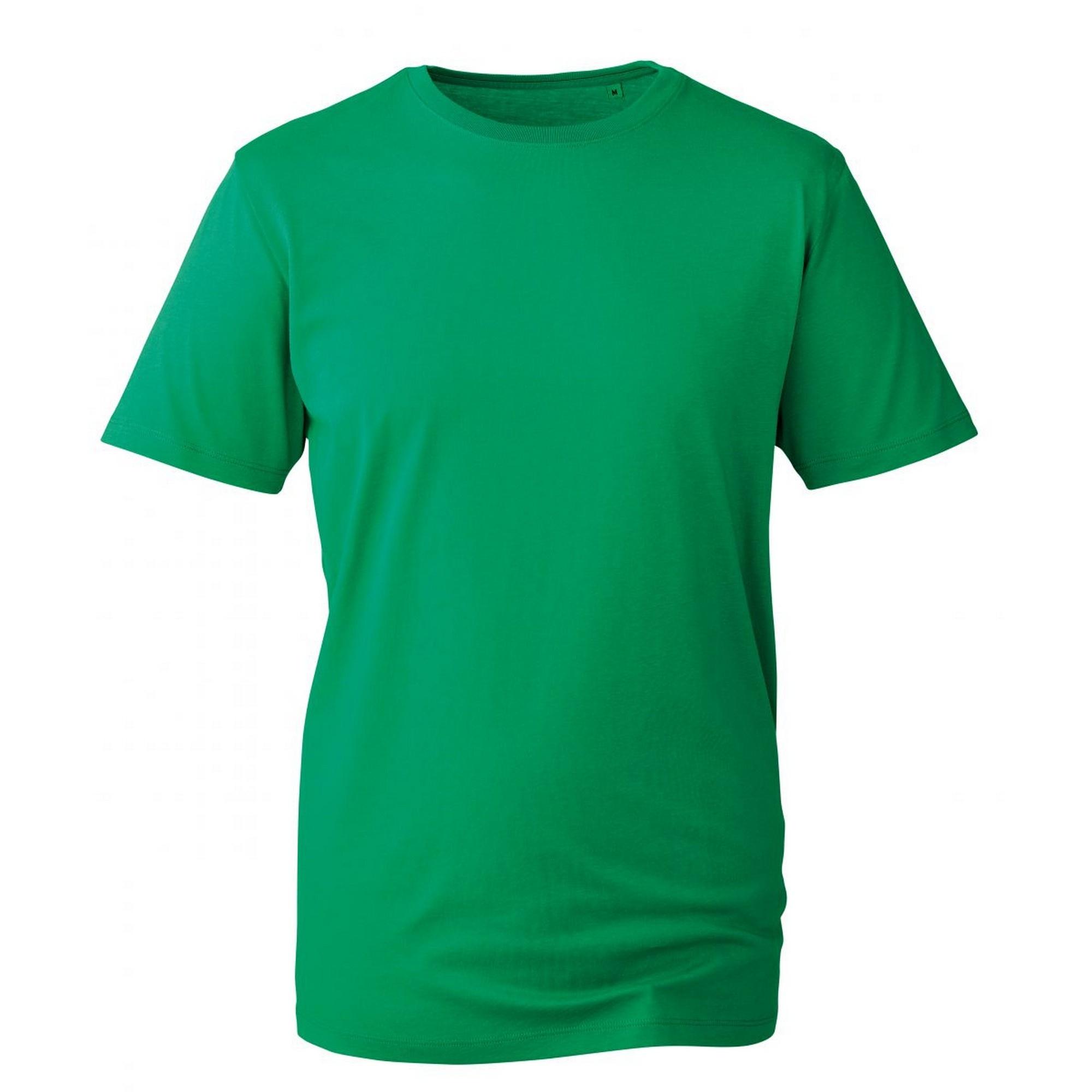 Anthem Mens Short Sleeve T-Shirt (M) (Kelly Green)