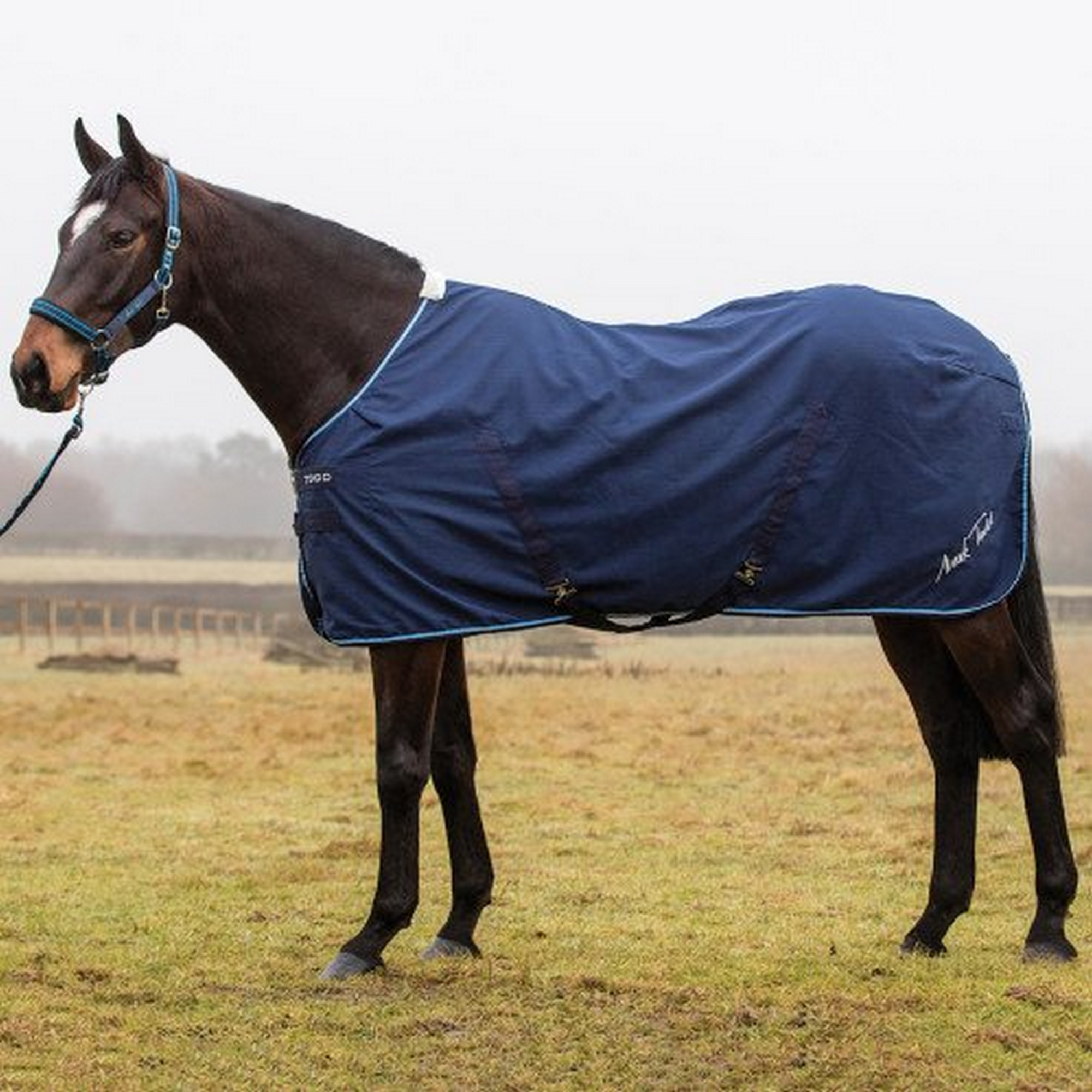 Mark Todd Pro Stable Sheet (TL3300)