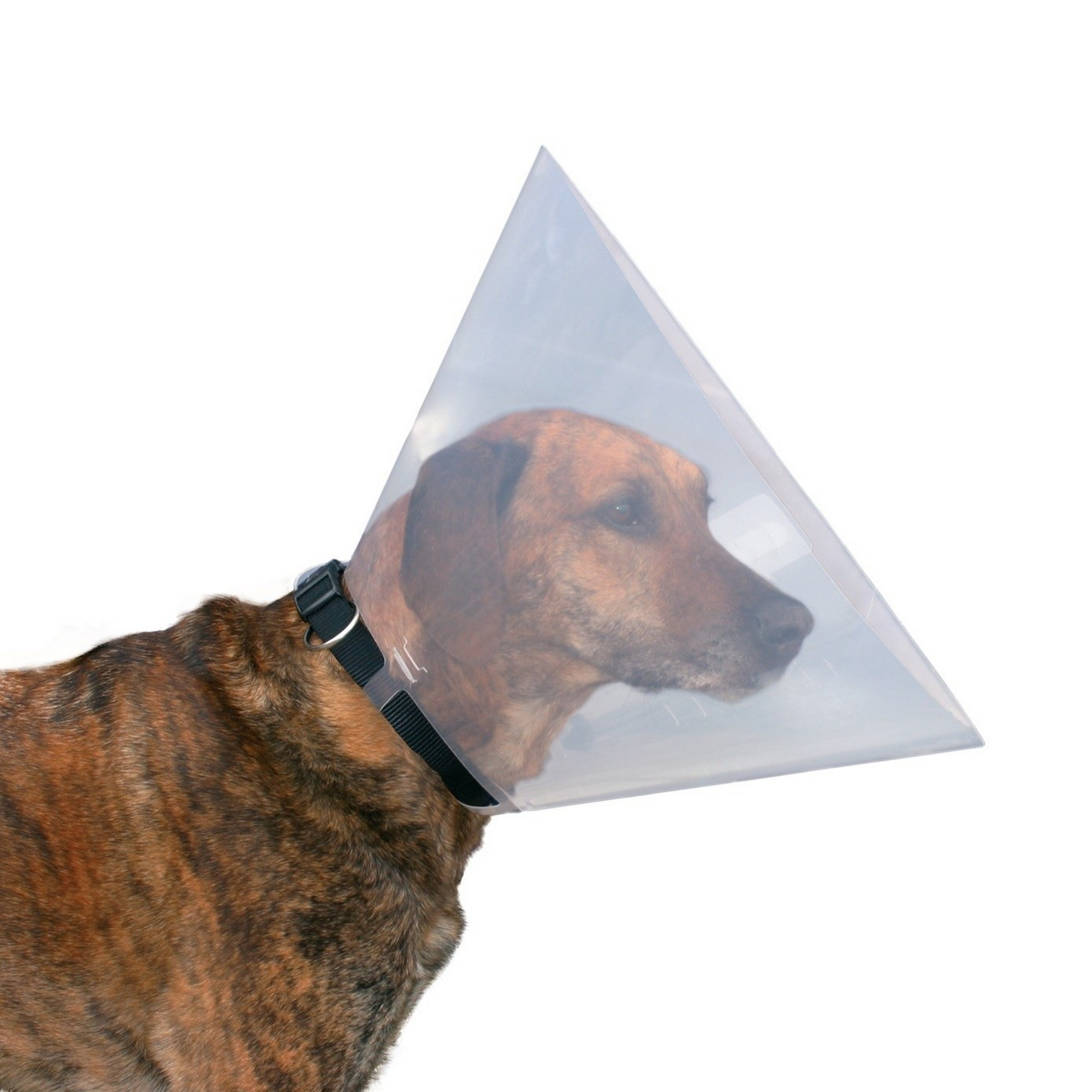 Trixie-Protective-Collar-For-Dogs-TX531 thumbnail 4