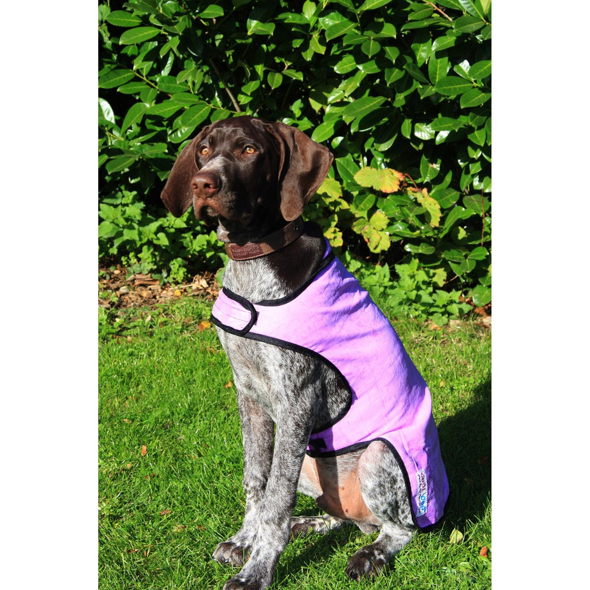 Prestige-Cool-Dog-Cooling-Coat-VP296