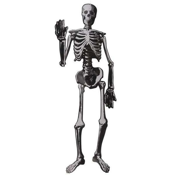 Egzamin - anatomia: kończyna górna