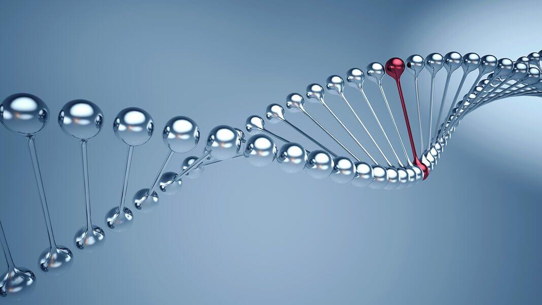 Ewolucja Życia - Puls Życia test
