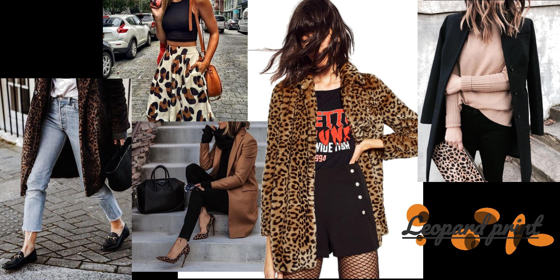 Moodboard - Leopard