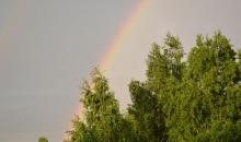 Jūnija iesākums dabā un debesīs