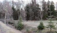 18.  novembris. Allaži, Latvija.