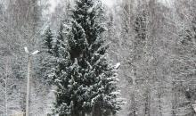 Pirmais rudens sniegs, oktobris 2012