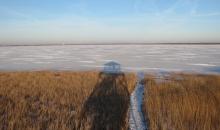 Saulaina diena starp jūru un ezeru
